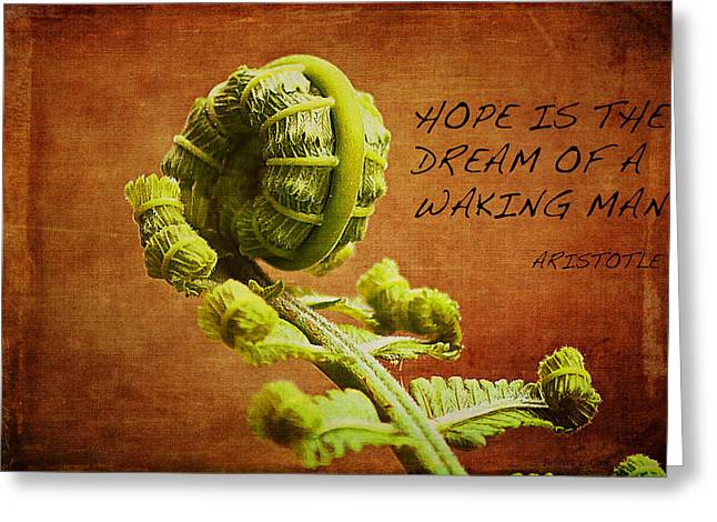 Lush Green Mixed Media Greeting Cards - Aristotle Quote Greeting Card by Bellesouth Studio