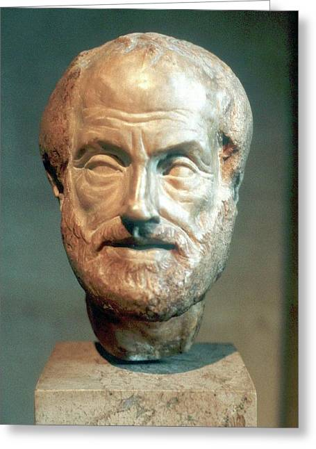 Aristotle Greeting Card by Universal History Archive/uig