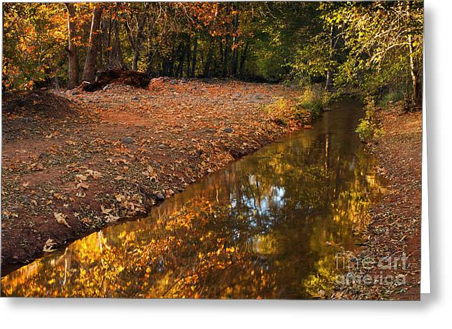 Arizona Autumn Reflections Greeting Card by Mike  Dawson