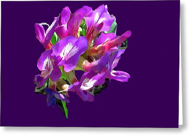 Chihuahua Artwork Greeting Cards - Arizona Desert Flowers Greeting Card by  Bob and Nadine Johnston