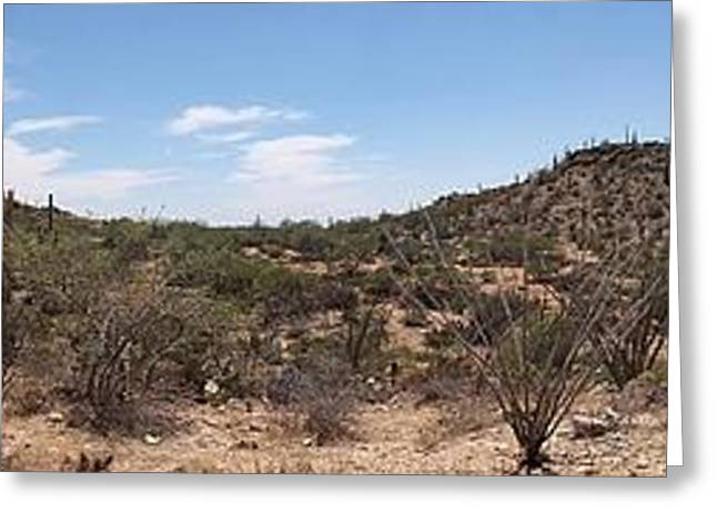 Arizona Desert Panorama Greeting Card by Joe Kozlowski