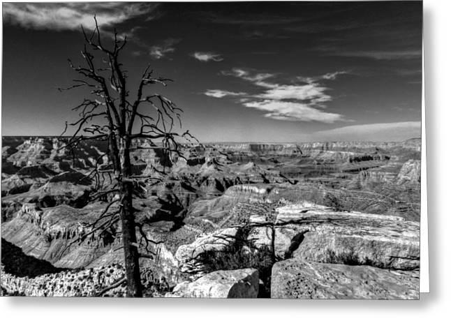 Canyons Greeting Cards - Arizona - Grand Canyon 013 Greeting Card by Lance Vaughn