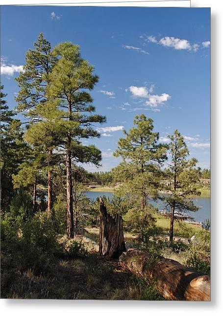 Edward Curtis Greeting Cards - Arizona High Country Greeting Card by Edward Curtis
