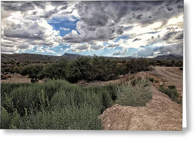 Contemporary Art Pyrography Greeting Cards - Arizona rain Greeting Card by Joyce Isas