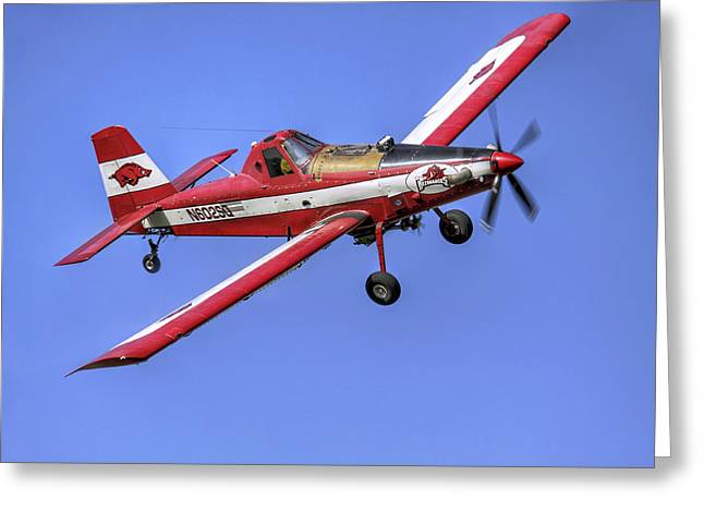 Woo Pig Sooie Greeting Cards - Arkansas Razorbacks Air Tractor Greeting Card by Jason Politte