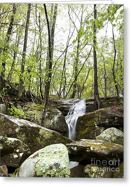 Arkansas Greeting Cards - Arkansas Waterfall Flowing in the Woods Greeting Card by Brandon Alms