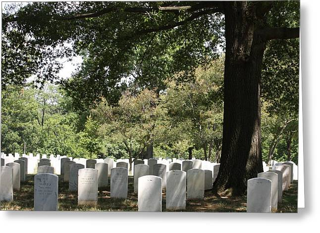 Stones Greeting Cards - Arlington National Cemetery - 121244 Greeting Card by DC Photographer