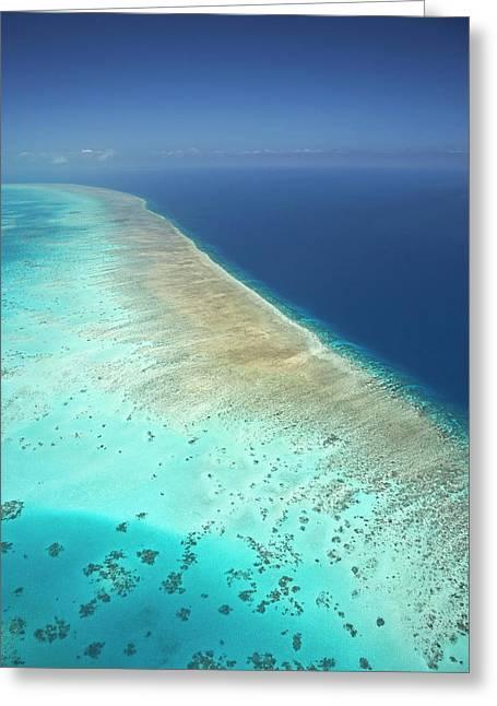 Arlington Reef, Great Barrier Reef Greeting Card by David Wall
