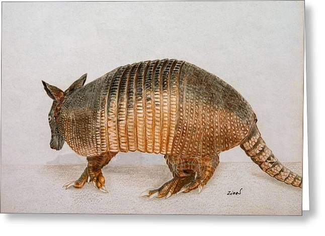 Layer Greeting Cards - Armadillo Greeting Card by Zina Stromberg