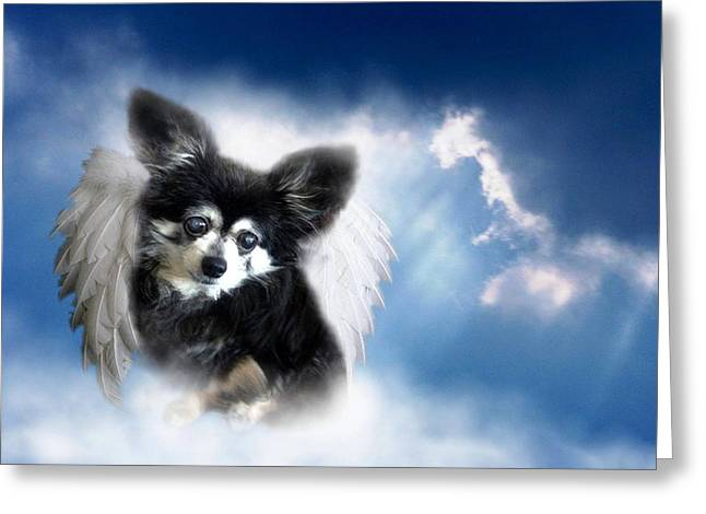 Armani Angel Greeting Card by Bruce Lennon