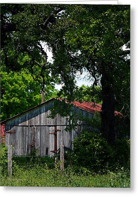Enterprise Greeting Cards - Armistead Homestead Shed Vertical Greeting Card by Connie Fox