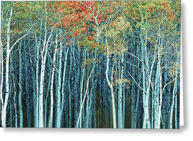 Abstract Digital Photographs Greeting Cards - Army of Trees Greeting Card by Edmund Nagele