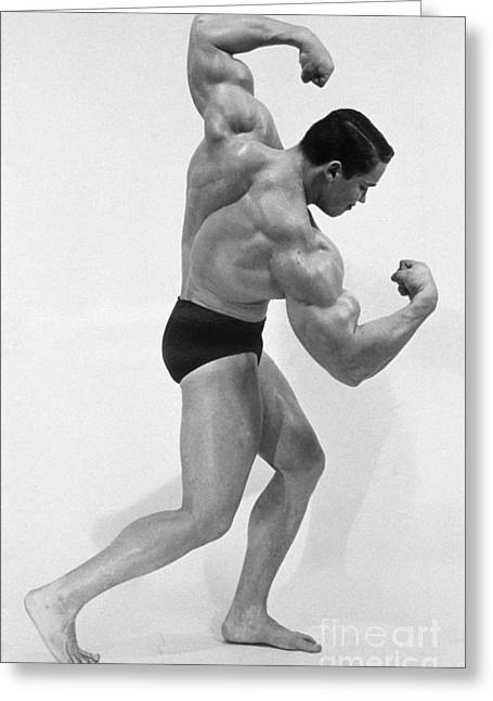 Schwarzenegger Greeting Cards - Arnold Schwarzenegger Greeting Card by Explorer
