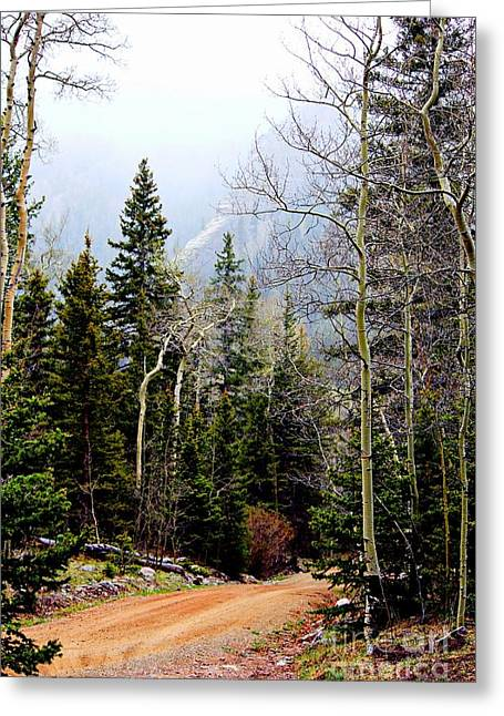 Around The Bend Greeting Card by Barbara Chichester