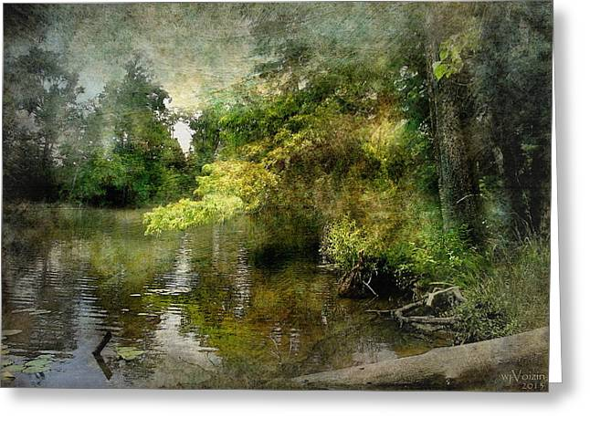 Calcasieu River Greeting Cards - Around the Bend Greeting Card by Bill Voizin