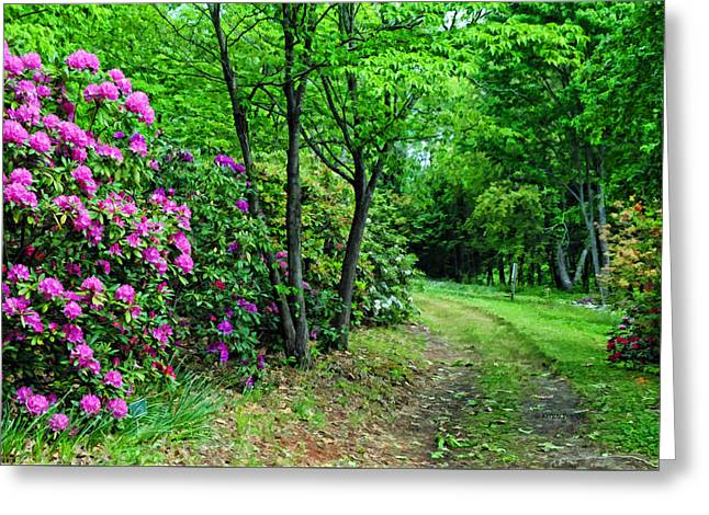 Around The Bend Greeting Card by Kenny Francis
