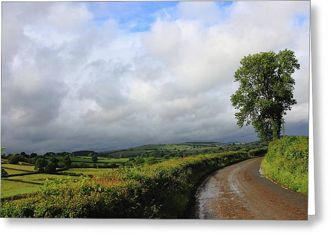 Around The Bend Greeting Card by Theresa Selley