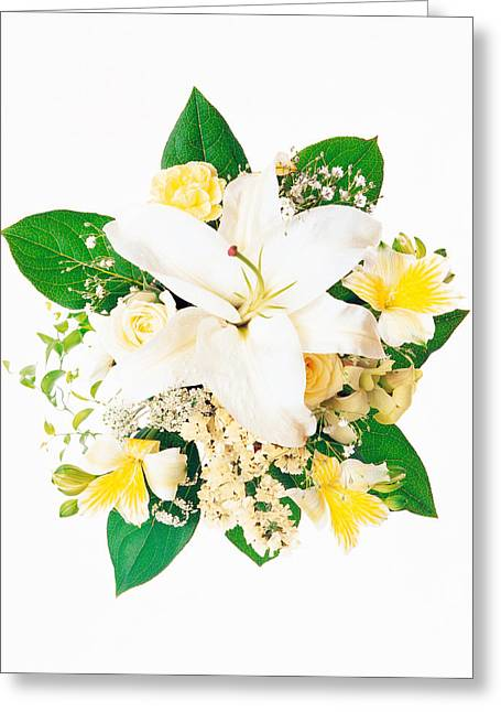 Creative Photography Greeting Cards - Arranged Flowers And Leaves On White Greeting Card by Panoramic Images
