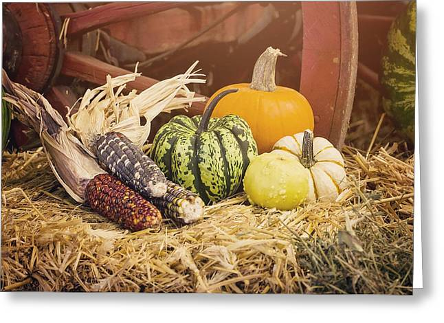 Arrival Of Autumn Greeting Card by Heather Applegate