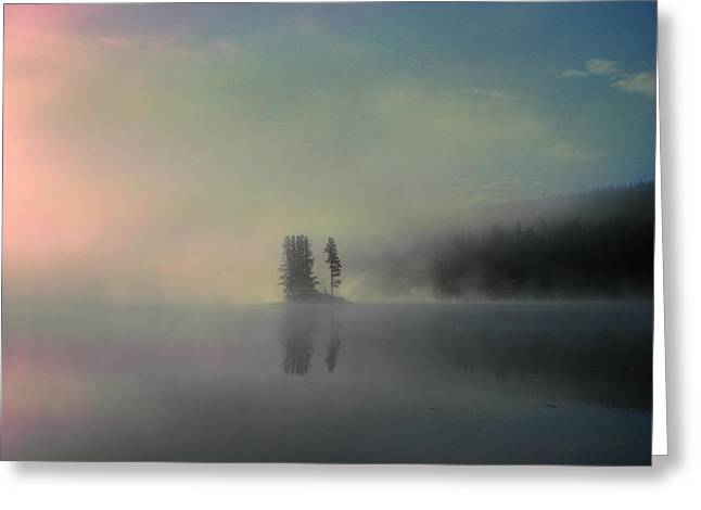 Light Grey Greeting Cards - Arrival of Dawn Greeting Card by Shirley Sirois