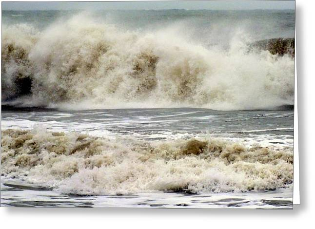Arrival Of Sandy Greeting Card by Karen Wiles