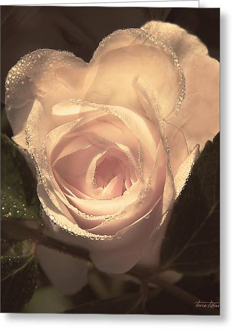 Floral Digital Art Digital Art Greeting Cards - Arrosa Greeting Card by Torie Tiffany
