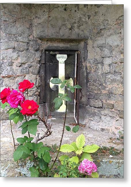Amberley Greeting Cards - Arrowslit Rose Greeting Card by Nicole Parks