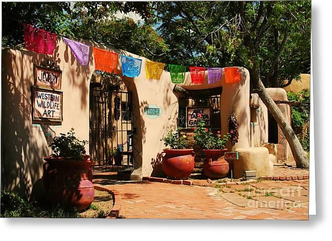 Sand Art Greeting Cards - Art In Albuquerque Greeting Card by Mel Steinhauer