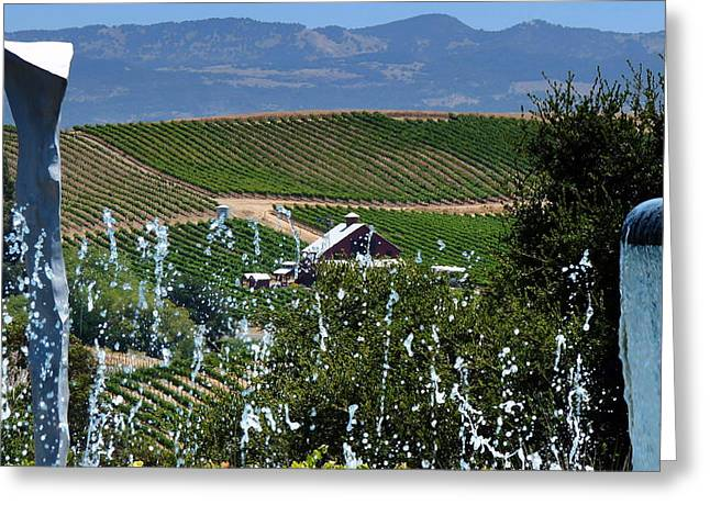 Recently Sold -  - Mountain Valley Greeting Cards - Artesa Vineyards and Winery Greeting Card by Jeff Lowe