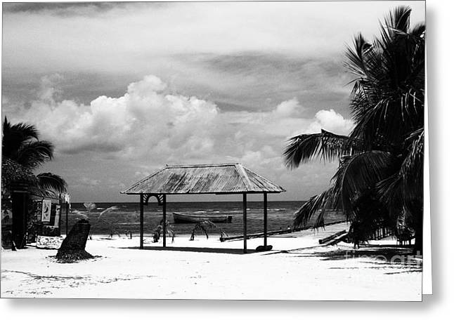Inverse Greeting Cards - Artful Beach Black and White Greeting Card by Heather Kirk