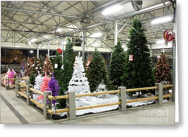 Artificial Christmas Trees For Sale Photograph by Renee Trenholm