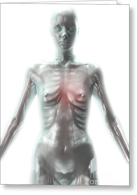 Artificial Life Female Android Greeting Card by Science Picture Co