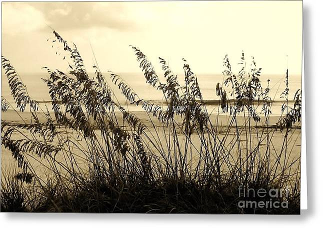 Best Ocean Photography Digital Greeting Cards - Beach - Sepia Greeting Card by D Hackett