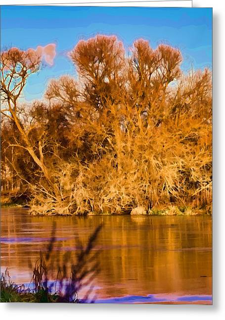 Trees Reflecting In Water Greeting Cards - Artistic Big Tree Colored Coloured #orange By Sun On January 2 2015 Besides The Creek Of Enkoping Greeting Card by Leif Sohlman