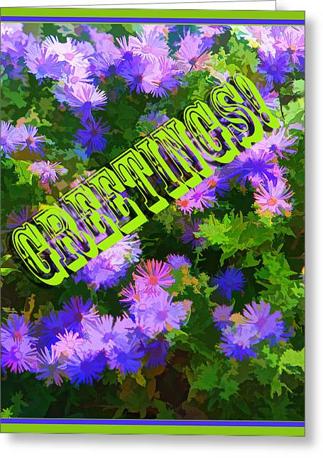 Asters Greeting Cards - Artistic Creative Greeting Card Greeting Card by Linda Phelps