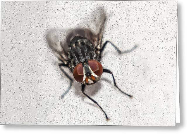 Oil Fly Greeting Card by Raul Davila