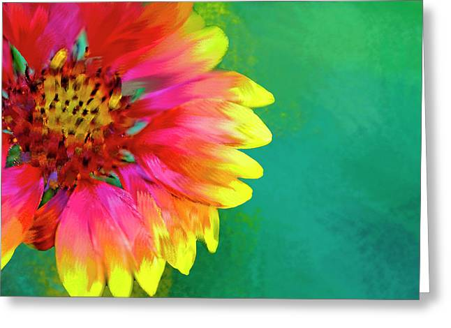 Artistic Rendition Of Indian Blanket Greeting Card by Rona Schwarz