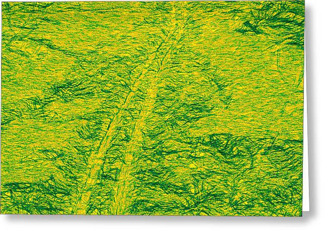 Ski Art Greeting Cards - Artistic Ski tracks in snow green tone Greeting Card by Leif Sohlman