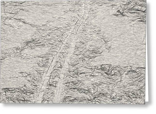 Ski Art Greeting Cards - Artistic Ski tracks in snow Greeting Card by Leif Sohlman