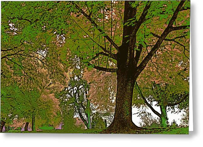 Old Tress Greeting Cards - Artistic Touch Trees and More Greeting Card by Beverly Guilliams