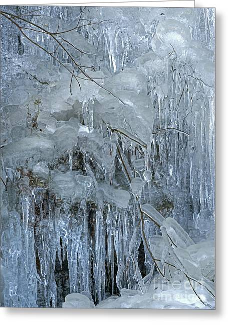 David Birchall Greeting Cards - Artistry In Ice 9 Greeting Card by David Birchall