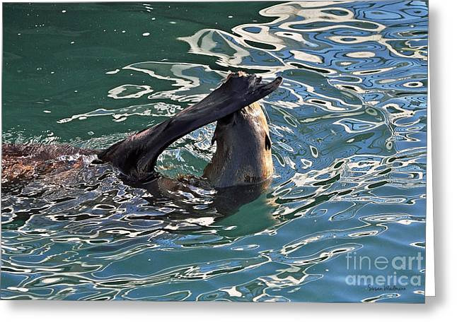 Susan Wiedmann Greeting Cards - Artsy Sea Lion Greeting Card by Susan Wiedmann