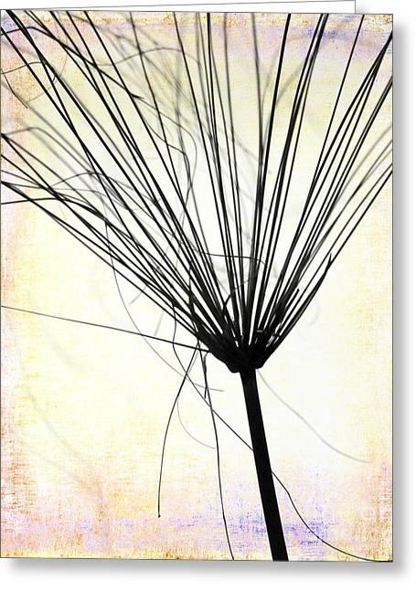 Weedy Greeting Cards - Artsy Weed Greeting Card by Sabrina L Ryan
