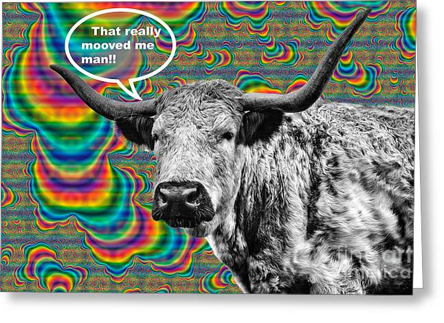 Colourful Art Greeting Cards - Arty Coo Really Mooved Greeting Card by John Farnan