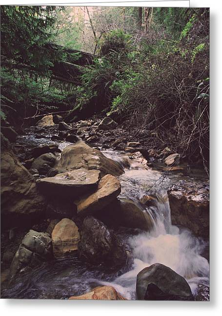 Rushing Water Greeting Cards - As Free As This Greeting Card by Laurie Search