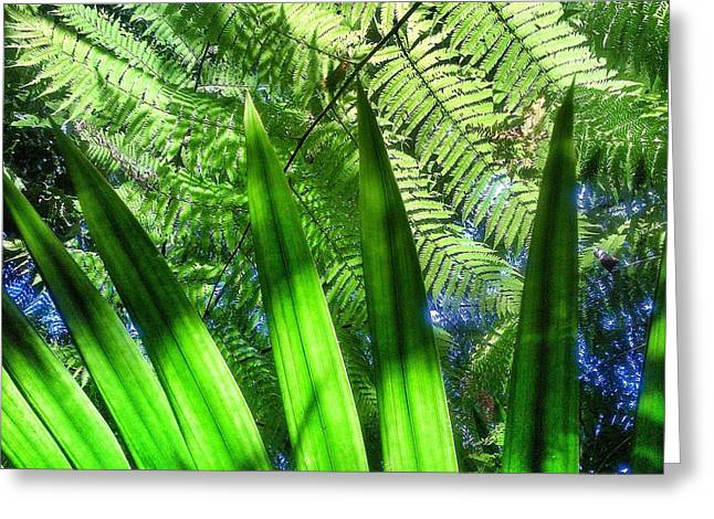 El Yunque Greeting Cards - As green as it gets Greeting Card by Olivier Calas