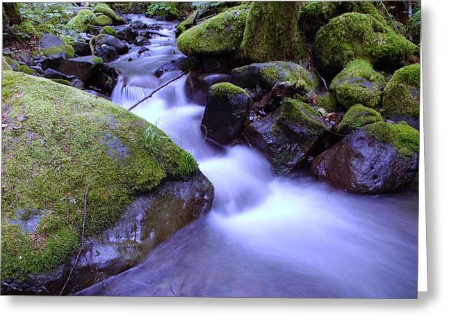 Moss Green Greeting Cards - As If Heaven Was A Calmly Place Greeting Card by Jeff  Swan
