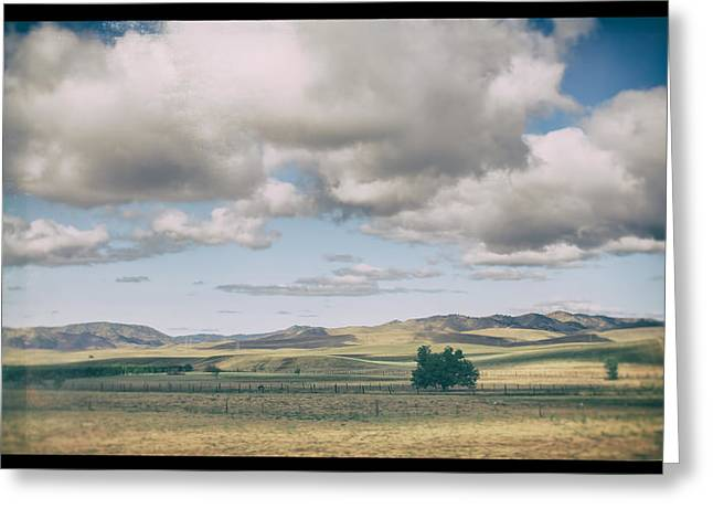 Big Sky Country Greeting Cards - As If There Werent a Care In the World Greeting Card by Laurie Search
