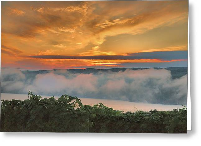 Vineyard Prints Greeting Cards - As Morning Breaks Greeting Card by Steven Ainsworth