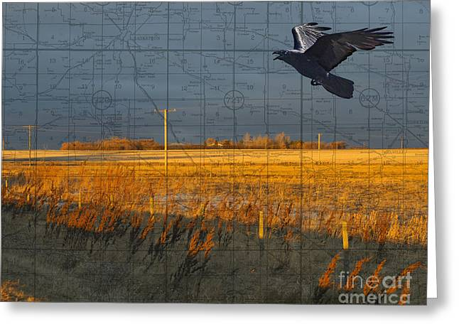 Judy Wood Digital Art Greeting Cards - As the Crow Flies-fall fields Greeting Card by Judy Wood